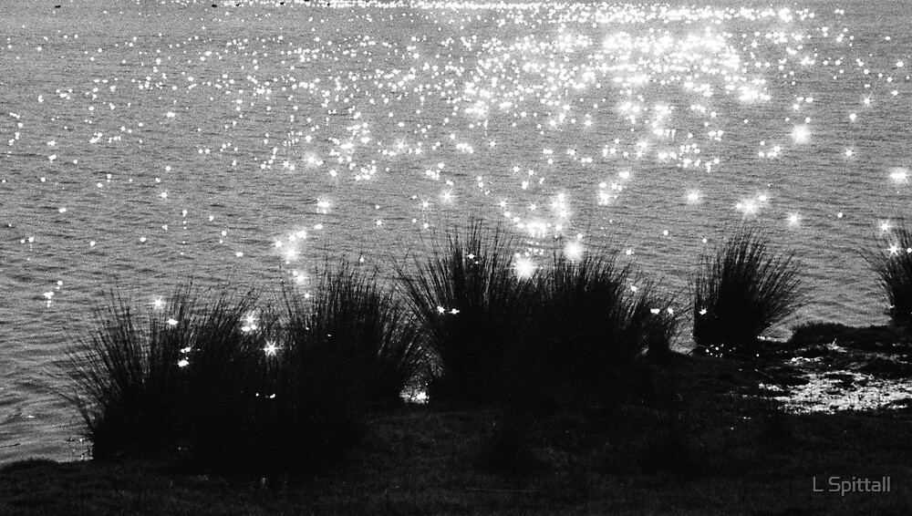 Sparkling water lights by L Spittall
