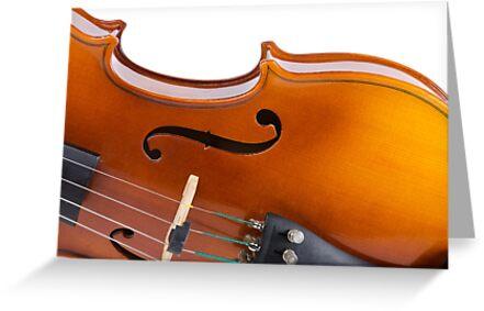 Violin by homydesign