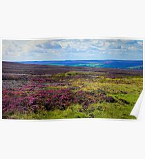 North Yorkshire Moors Poster