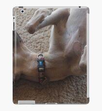 Holidays  iPad Case/Skin