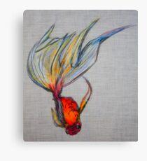 Goldfish Pond (close up #7) Canvas Print