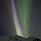 Night Lights #13 by akaurora