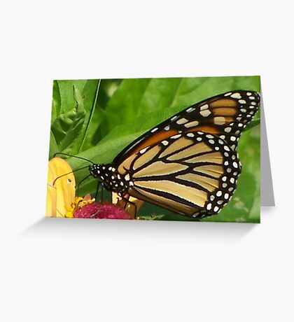 I Can`t Get Much Closer Greeting Card