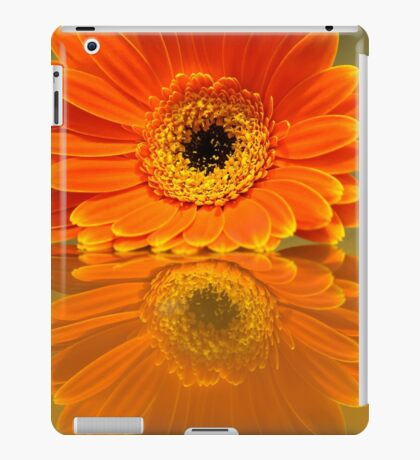 Double Orange iPad Case/Skin