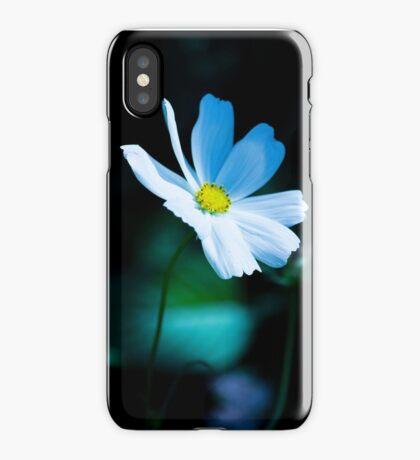 Daisy 3 iPhone Case