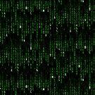 Hylian Matrix by Sarinilli