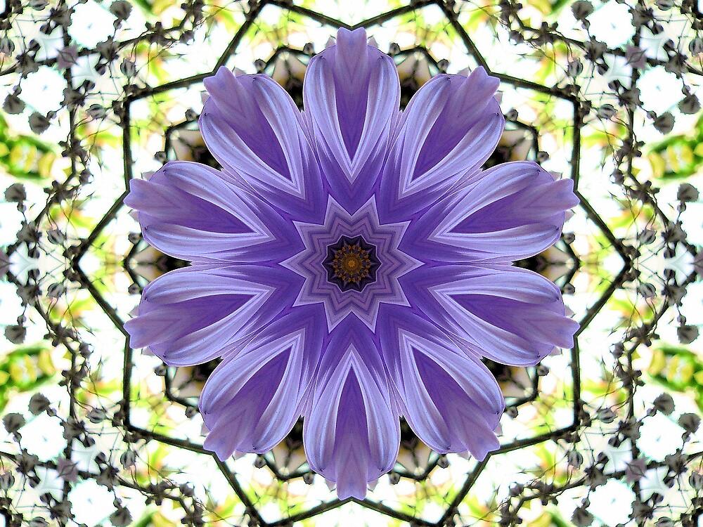 Purple glow by Doreen