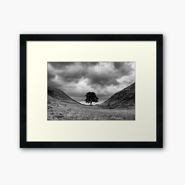 Sycamore Gap Framed Art Print