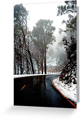 0490 Road to Mt Buffalo by DavidsArt