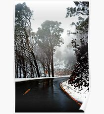 0490 Road to Mt Buffalo Poster