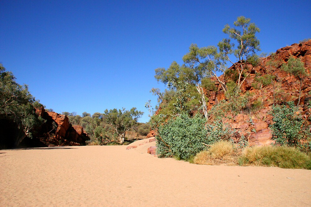 East Macdonnell Ranges IV by Dave Law