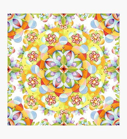 Flower Garden Mandala Photographic Print