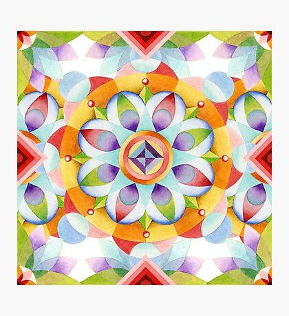 Flower Garden Kaleidoscope Photographic Print