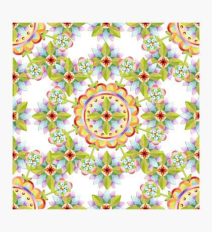 Starflower Blossoms Photographic Print