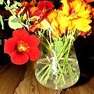 Lovely Scented Nasturtium Bouquet by MaeBelle