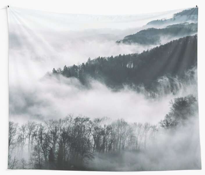 Ethereal misty forest by peggieprints