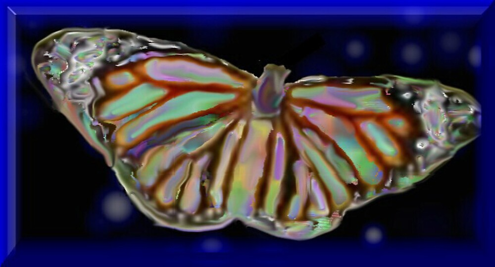 butterfly by RobertLuxford