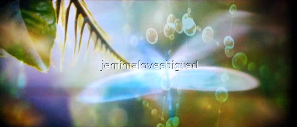 Borrowed Wings by jemimalovesbigted