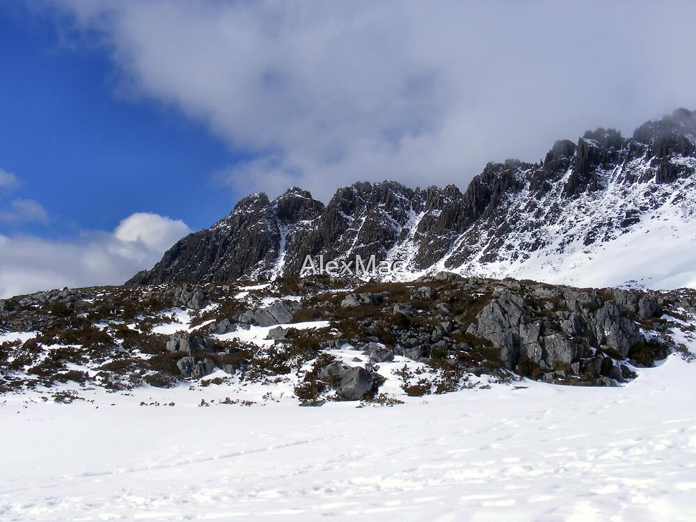 Cradle Mountain View - Tasmania by AlexMac