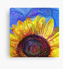 Solar eyelashes Canvas Print
