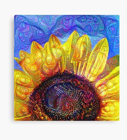 Solar eyelashes Canvas Print
