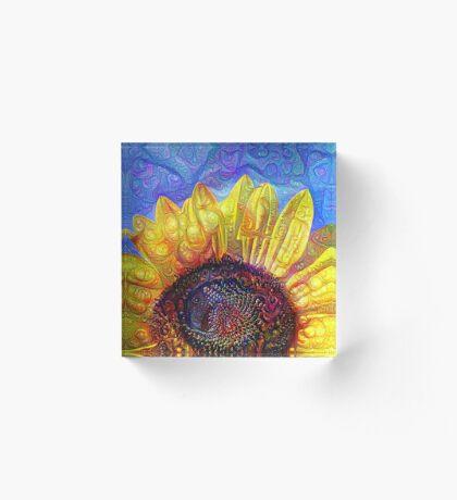 Solar eyelashes Acrylic Block