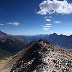 On Grizzly ridge by zumi