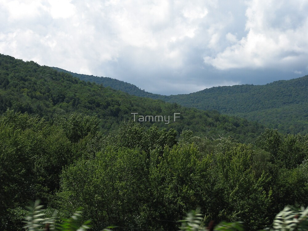 Rolling Vermont Mountains by Tammy F