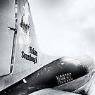 Air North 1942 by ArtbyDigman