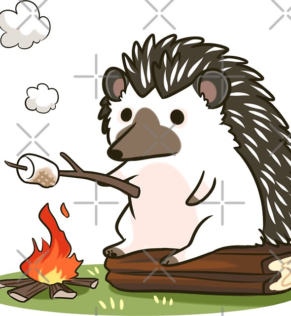 Campfire by pawlove