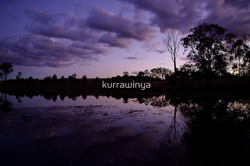 Purple Haze by Penny Kittel
