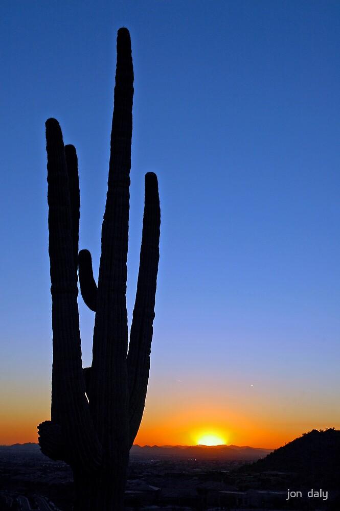 arizona sunset by jon  daly