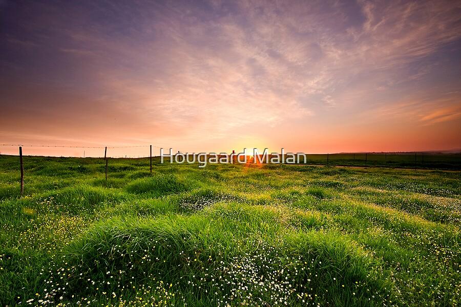 Meadow in Heaven by Hougaard Malan