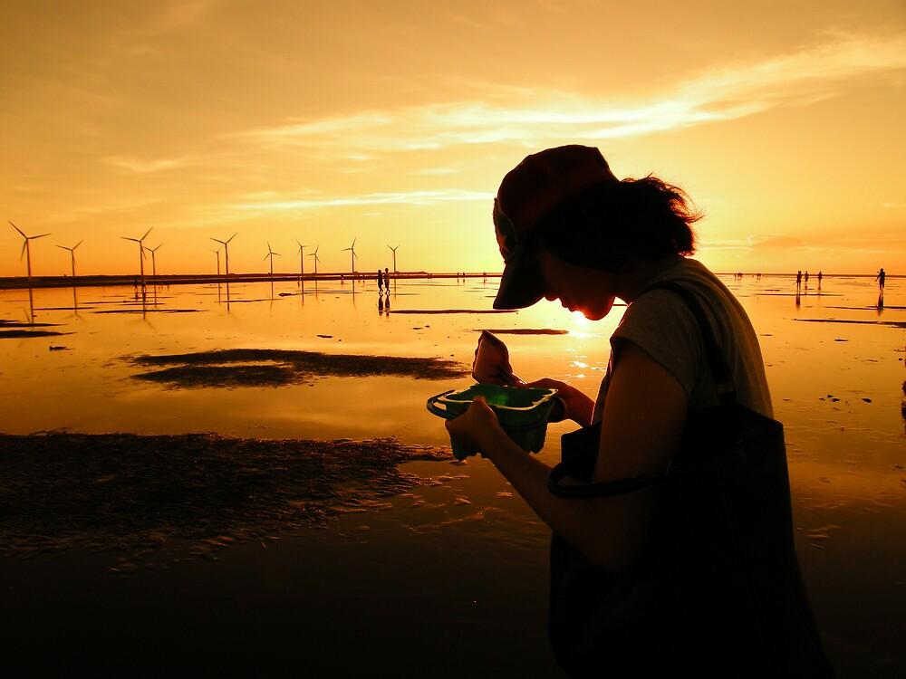 sunset by atnjhmwx
