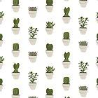 Cacti & Succulent – White by Vicky Webb