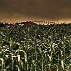 Children Of The Corn by Kevin  Kroeker