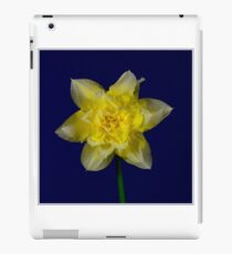 Double headed daffodil iPad Case/Skin