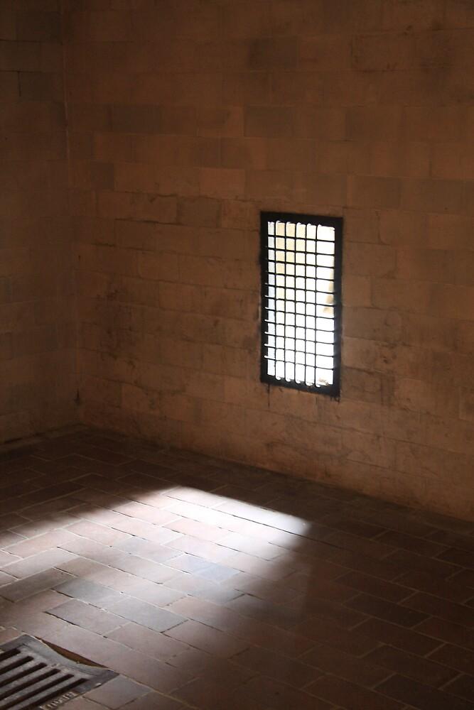 Dachau by David Sellers