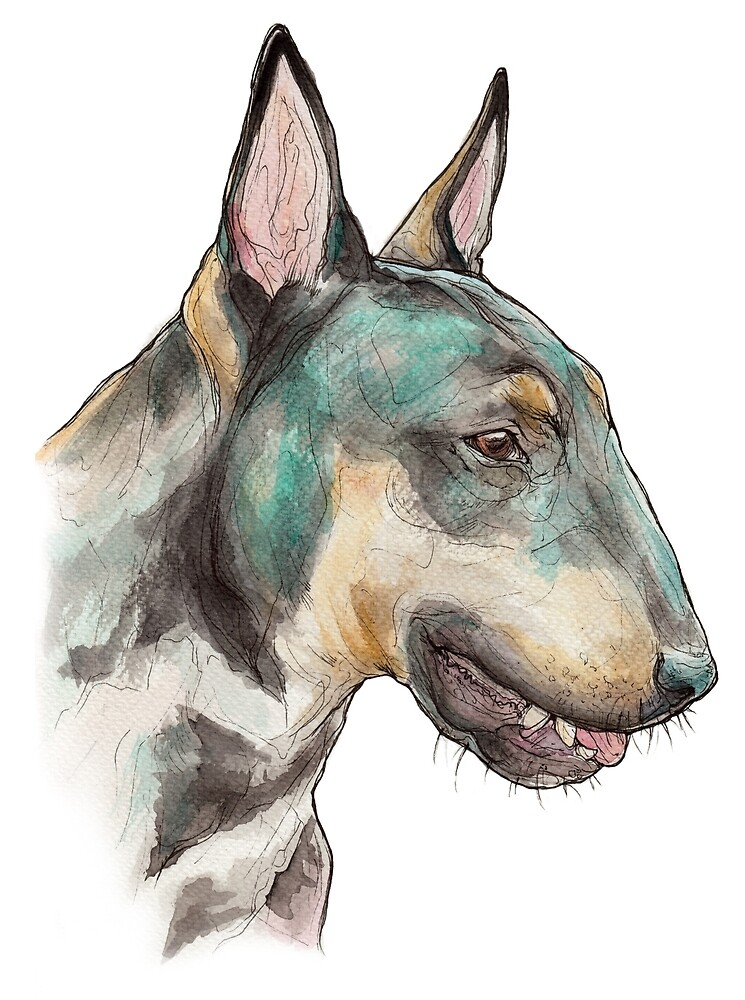 BULL TERRIER by imynagle