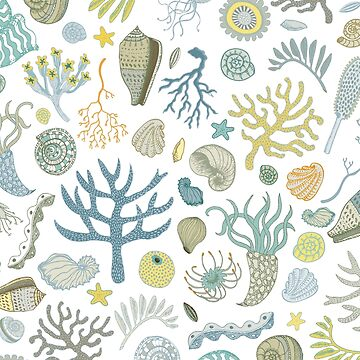 Natural Forms - nautical pattern by Cecca Designs by Cecca-Designs