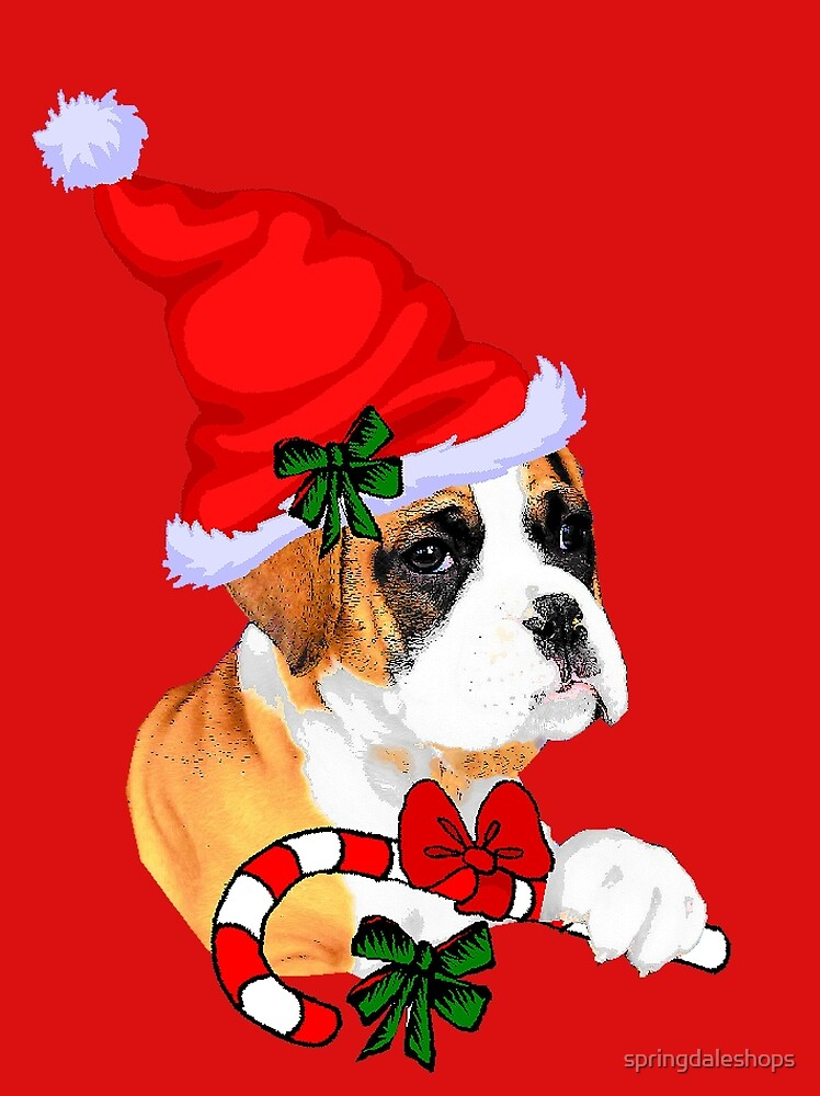 Boxer with Santa Hat Christmas Gifts by springdaleshops