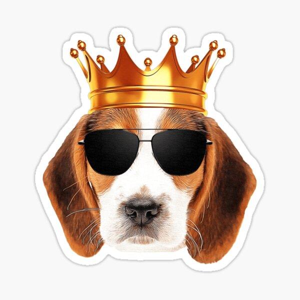 Rey beagle Pegatina