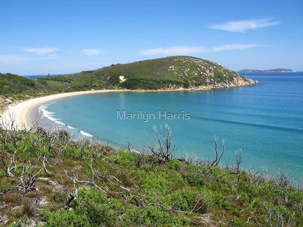 Picnic Bay - Wilsons Promontory National Park by Marilyn Harris