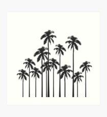 Exotische tropische Schwarzweiss-Palmen Kunstdruck