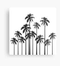 Black and White Exotic Tropical Palm Trees Metal Print