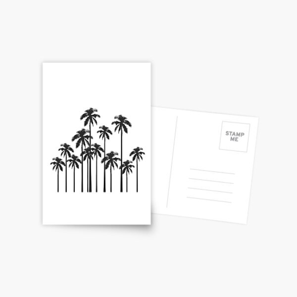 Black and White Exotic Tropical Palm Trees Postcard