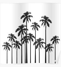 Exotische tropische Schwarzweiss-Palmen Poster