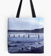 Groynes at Sandsend Tote Bag