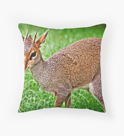 Dik Dik Throw Pillow