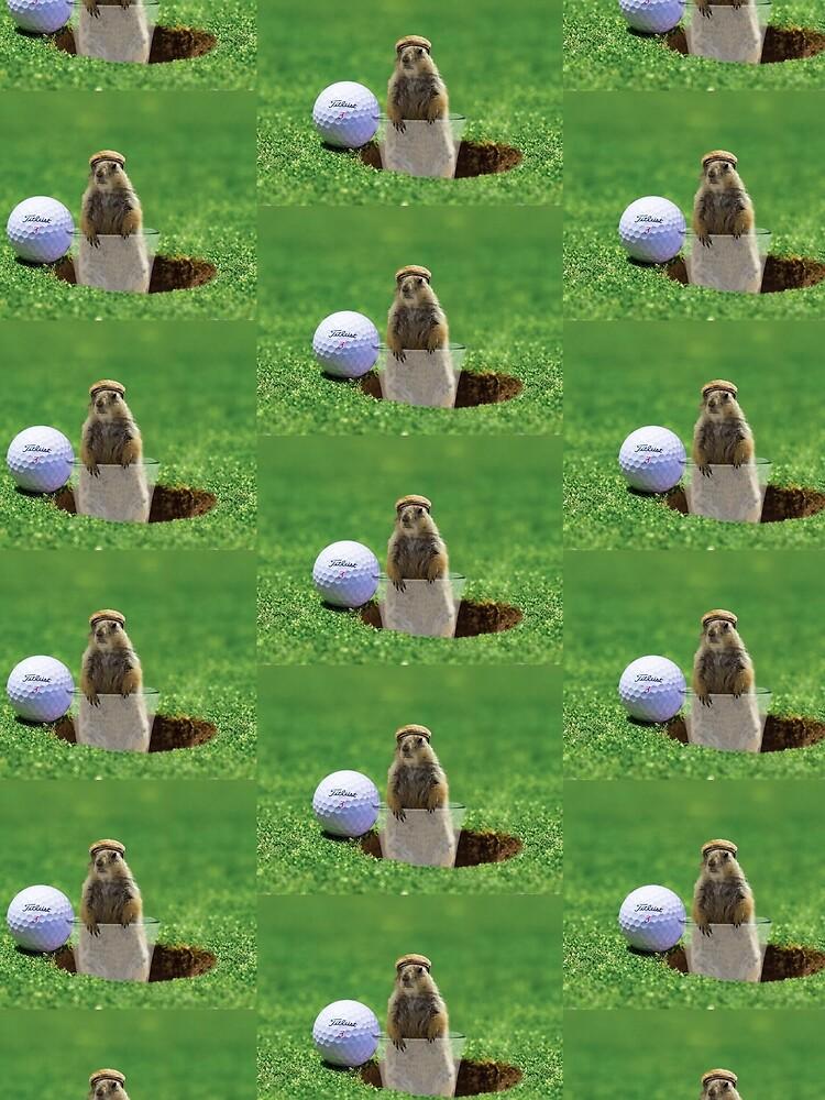 Gopher Golf by BigRedCurlyGuy